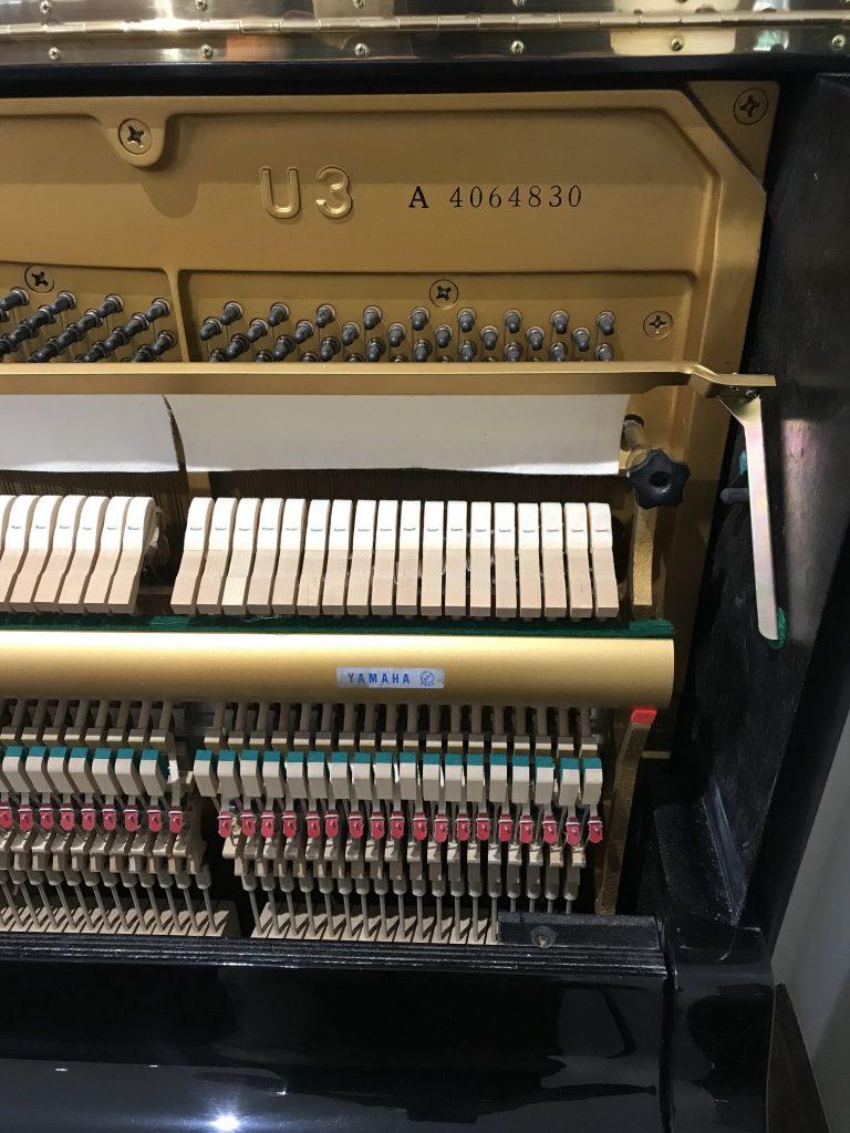 piano,tuning,dorset,Yamaha