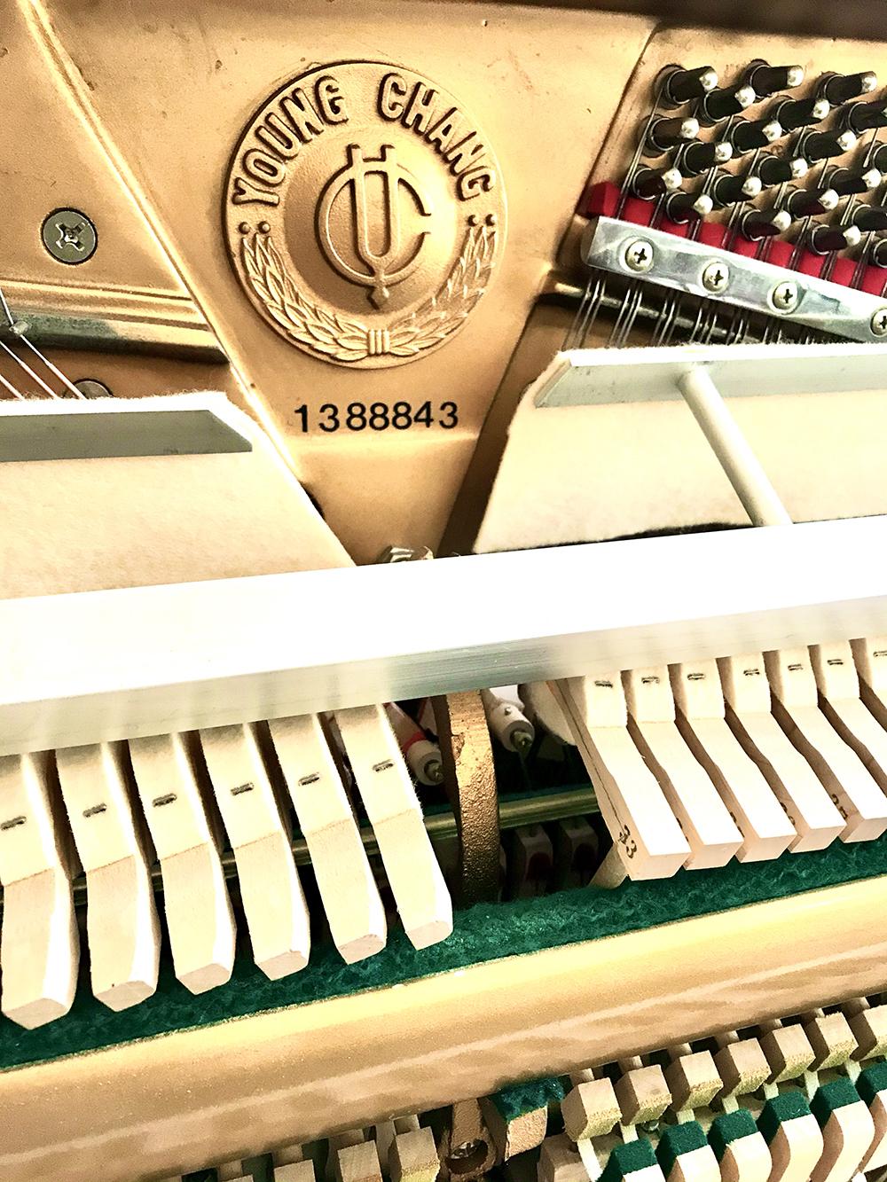 Young-Chang-Piano-Dorset-1.jpg